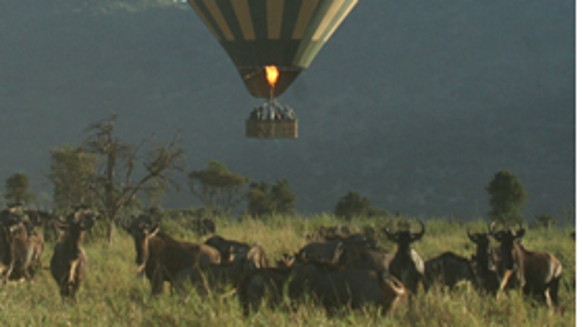 balloon safari serengeti